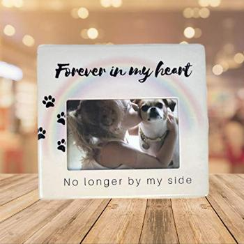 BANBERRY DESIGNS Dog Picture Frame Memorial – Photo